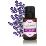 miracle-essential-oils-lavender-lavandula-officinalis