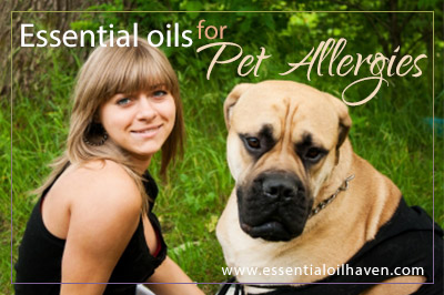 • Essential oils for pet allergies