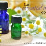 Do Essential Oils Go Bad?