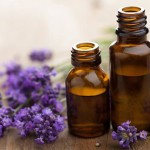Top 10 Lavender Essential Oil Benefits