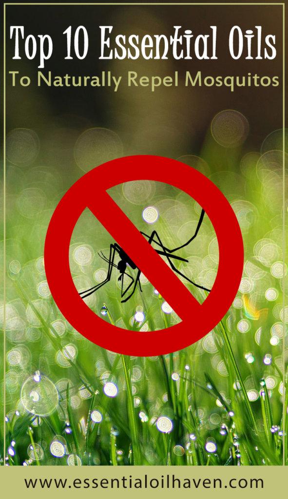 essential oils as mosquito repellent
