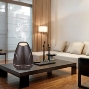 diffuser use in your living room