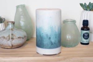edens garden ceramic diffuser review