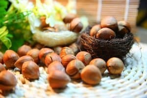 hazelnuts on table